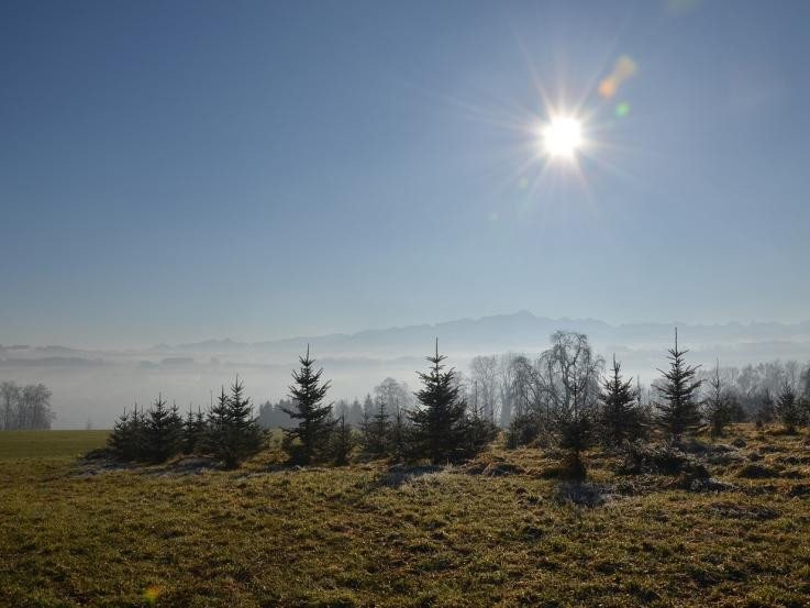 Wohnbauland erwerben Schweiz